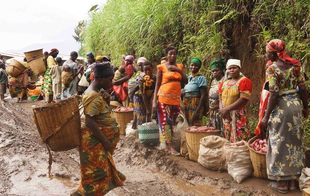 DR Congo's displaced families at risk as food aid dries up